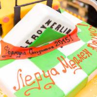 Промо-открытие магазина Леруа Мерлен в Юдино - 08
